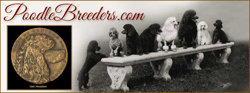 Standard, Miniature and Toy Poodle Breeders and Puppies